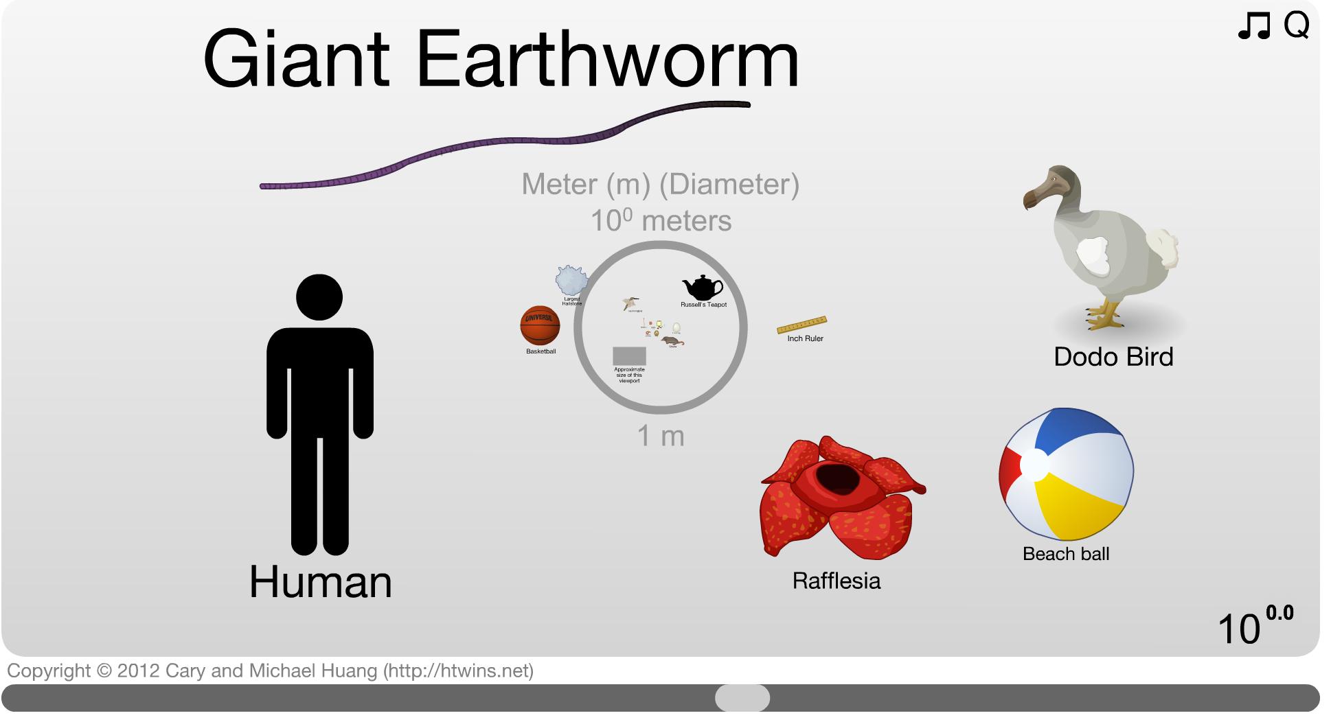 Quanto siamo grandi nell'universo?